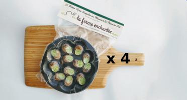 La Ferme Enchantée - Lot de 4 Assiettes De 12 Escargots Petit Gris Au Beurre À La Fleur De Sel