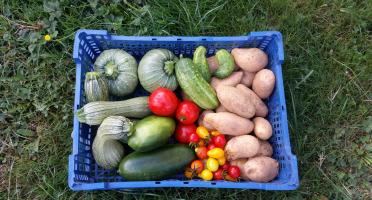 La Ferme Boréale - Panier De Fruits Et Légumes De Saison