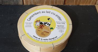 Gourmets de l'Ouest - Camembert de Bretagne Fermier au lait cru