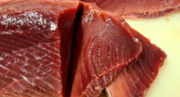 Le Panier à Poissons - Morceau de thon rouge (500gr par pièce)