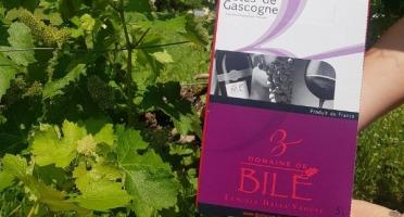 Domaine de Bilé - Fontaine à Vin BIB Rosé IGP Cotes de Gascogne 5 Litres