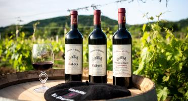 Domaine la Paganie - Coffret de 3 Bouteilles de Vins Rouges - AOC Cahors - 2015, 2016 Et 2017 Réserve Henry
