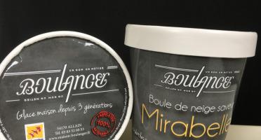 Maison Boulanger - Boule De Neige  saveur Mirabelle