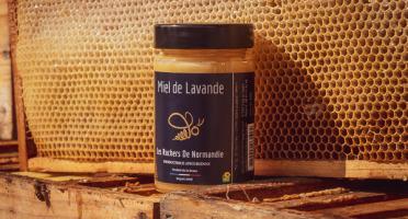 Les Ruchers de Normandie - Miel de Lavande 250g
