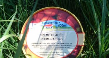 Les Glaces de la Promesse - Glace Rhum-raisins