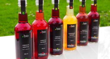 Hibiskus  Gourmet - Offre Découverte Bio 6x33cl