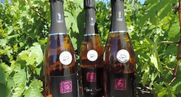 Domaine des Bourrats - Méthode Traditionnelle Rose de Noirs - 3 bouteilles