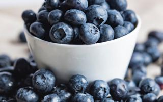 La Ferme des petits fruits - [surgele] Myrtilles Bio 3kg