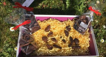 LES GOURMANDS D'OUEST - Chocolats Lait Friture De La Mer