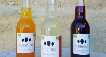 LES JARRES CRUES - Lot De 3 Boissons Bio Naturellement Fermentée