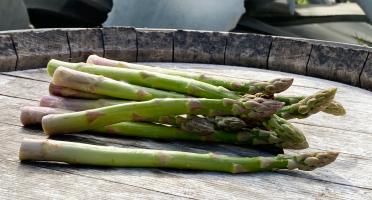 La Boite à Herbes - Botte D'asperge Verte De Provence - 250g