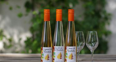 Domaine de l'Ambroisie - Lot de Liqueur, Eau De Vie Et Crème de Mirabelle bio origine Lorraine  (3x35cl)