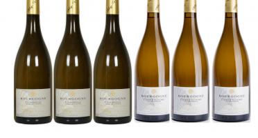 Domaine Tupinier Philippe - 3 Bouteilles Bourgogne Blanc Vieilles Vignes  2019 3 bouteilles Bourgogne Côte d'Auxerre Blanc 2017