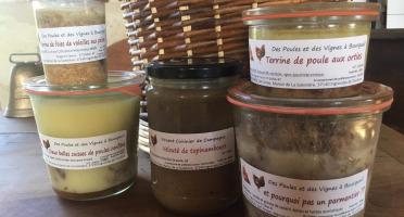 Des Poules et des Vignes à Bourgueil - Offre Du Mois D'avril
