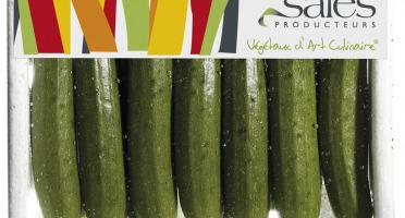 Maison Sales - Végétaux d'Art Culinaire - Mini Courgette - 13 Pièces Minimum