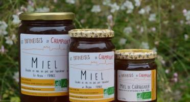 Les Butineuses de Champigny - Miel de Châtaignier Bio - 500 g