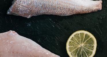 Côté Fish - Mon poisson direct pêcheurs - Filets De Pageot 300g