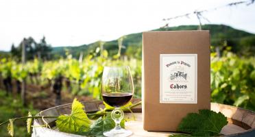 Domaine la Paganie - Vin Rouge en BIB (Bag In Box) 10 litres - AOC Cahors