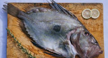 Côté Fish - Mon poisson direct pêcheurs - Saint Pierre