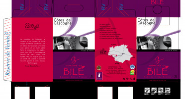 Domaine de Bilé - Fontaine À Vin Bib Rosé 5 Litres