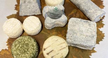 Le Petit Perche - Grande Composition : Nos Fromages de Chèvre + 1 mini Perche offert