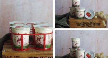Ferme Chambon - Yaourts au Lait Cru de Vache et aux Fruits (Fraise) x12