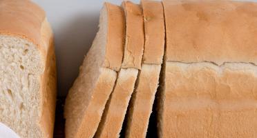 CANELAS - Pão de Forma