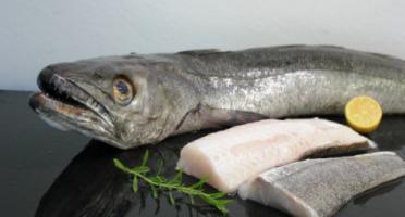 Pêcheries Les Brisants - Ulysse Marée - Dos De Merlu - Peau - Lot De 400g