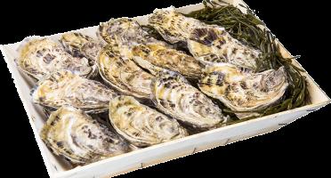 Les Huîtres Chaumard - Huîtres de Saint-Riom N°3 - bourriche de 12 pièces (1 douzaine)