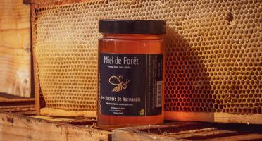 Les Ruchers de Normandie - Miel de Forêt liquide 500g