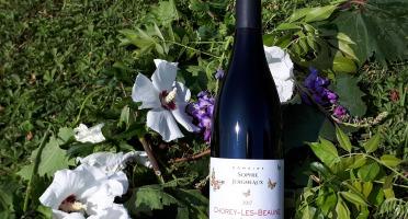 """Domaine Sophie Joigneaux - AOP Chorey-les-Beaune """"les Beaumonts"""" 3x75cl Millésime 2017"""