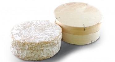 BEILLEVAIRE - Camembert de Normandie AOP