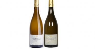 Domaine Tupinier Philippe - 1 Bouteille Bourgogne Vieille Vigne 1 Côte D'auxerre Blanc
