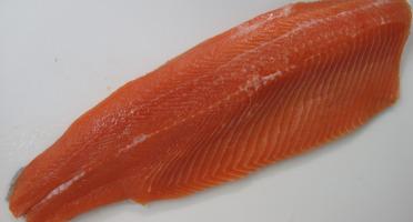 La Ferme du Ciron - Lot De Filets De Truite Ikejime 2kg