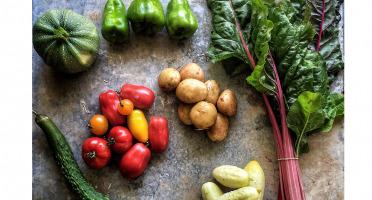 La Ferme d'Artaud - Panier de légumes frais - 5kg