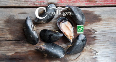 Camargue Coquillages - Moules De Camargue Nettoyées - Agriculture Biologique