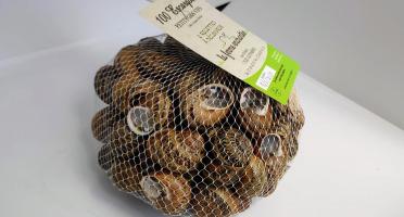 La Ferme Enchantée - Escargots Petits Gris Vifs, Jeuné Prêt à Cuisiner - 100 Pièces