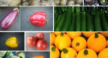 Multiproductions - Cédric Joliveau - Panier de Légumes Ensoleillés - 14 kg