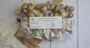 Limero l'Escargot Mayennais - Coquilles D'escargots Gros Gris FRAIS À La Bourguignonne - Lot De 2 X 60