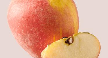 Les Côteaux Nantais - Pomme Dalirène Ab&demeter