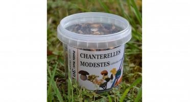 Trapon Champignons - Chanterelles Jaunissantes Sechées - 30 G