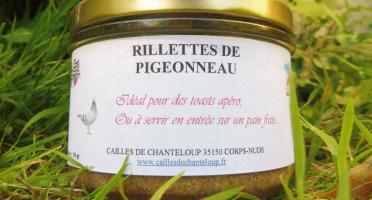 Cailles de Chanteloup - Rillettes De Pigeon 190gr