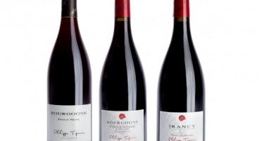 Domaine Tupinier Philippe - Lot De 3 Vins Rouges : Bourgogne 2015 , Côte D'Auxerre 2016, Irancy 2018 AOC  - 3 Bouteilles