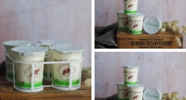 Ferme Chambon - Yaourts au Lait Cru de Vache Natures x12