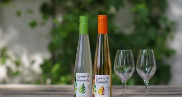 Domaine de l'Ambroisie - Coffret cadeau Duo de Liqueurs : Mirabelle bio Origine Lorraine et Bergamote (2x35cl)