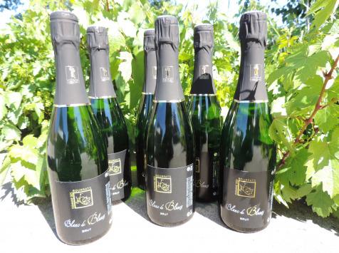 Domaine des Bourrats - Méthode Traditionnelle Blanc de Blancs - lot de 6 bouteilles