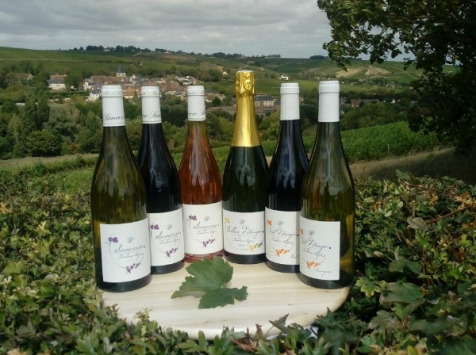 Sancerre Doudeau-Leger - Coffret Découverte Des Vins Doudeau-léger - 6 Bouteilles