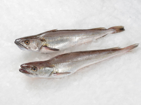 Côté Chic - Poisson frais de Méditerranée - Merlan (merlu)