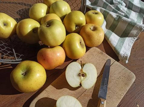 Le Verger de Crigne - Pommes Chantecler Bio (moyen Calibre) - 10kg