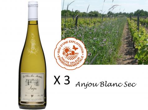 Le Clos des Motèles - Aoc Anjou Blanc Sec 2019: 3 Bouteilles